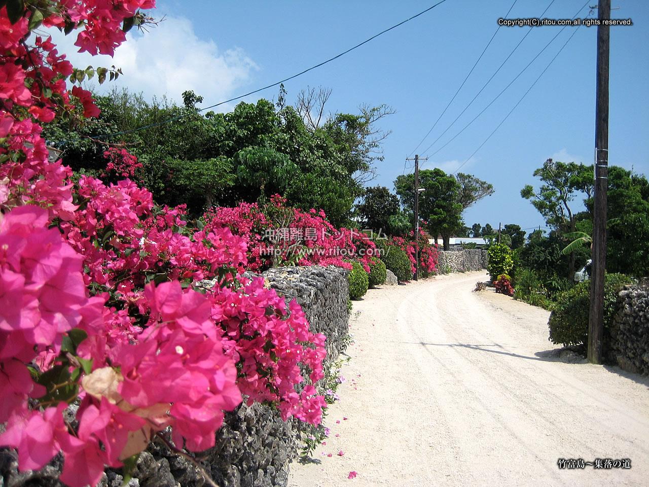 竹富島〜集落の道