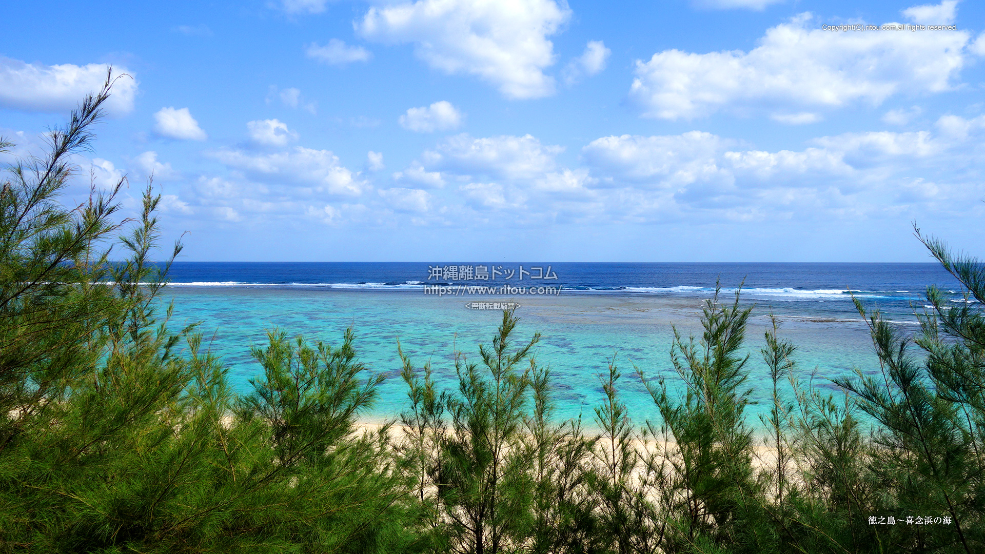 徳之島〜喜念浜の海