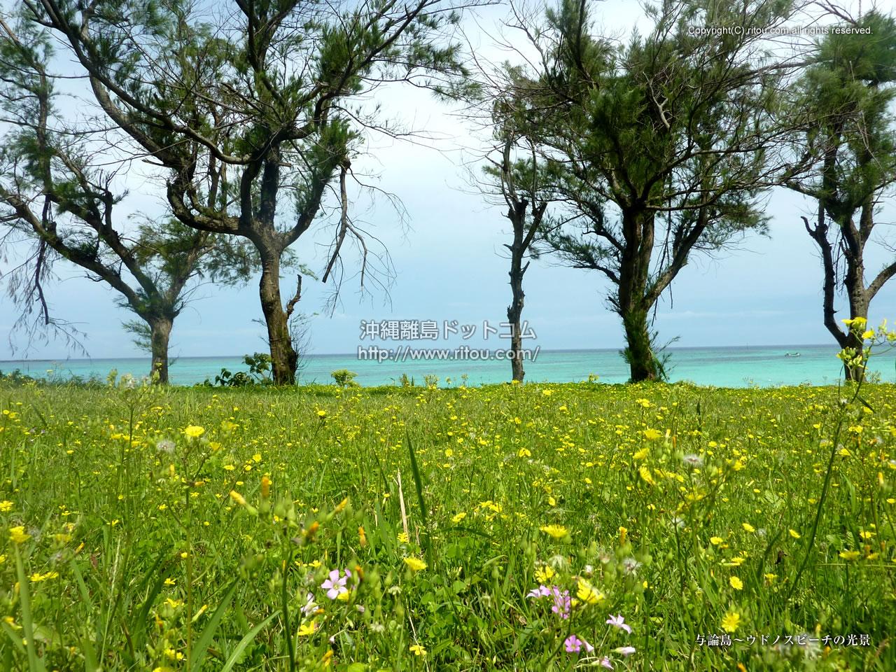 与論島〜ウドノスビーチの光景