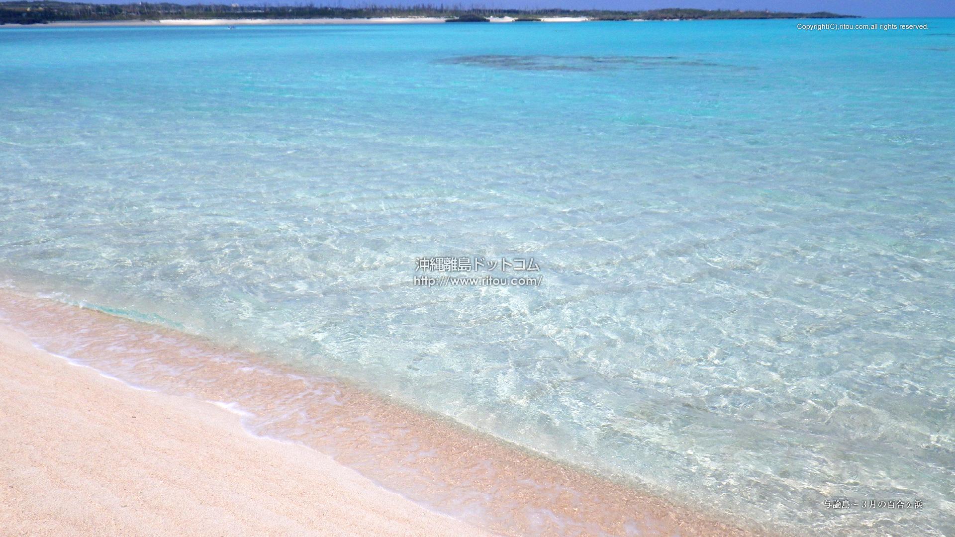 与論島〜3月の百合ヶ浜