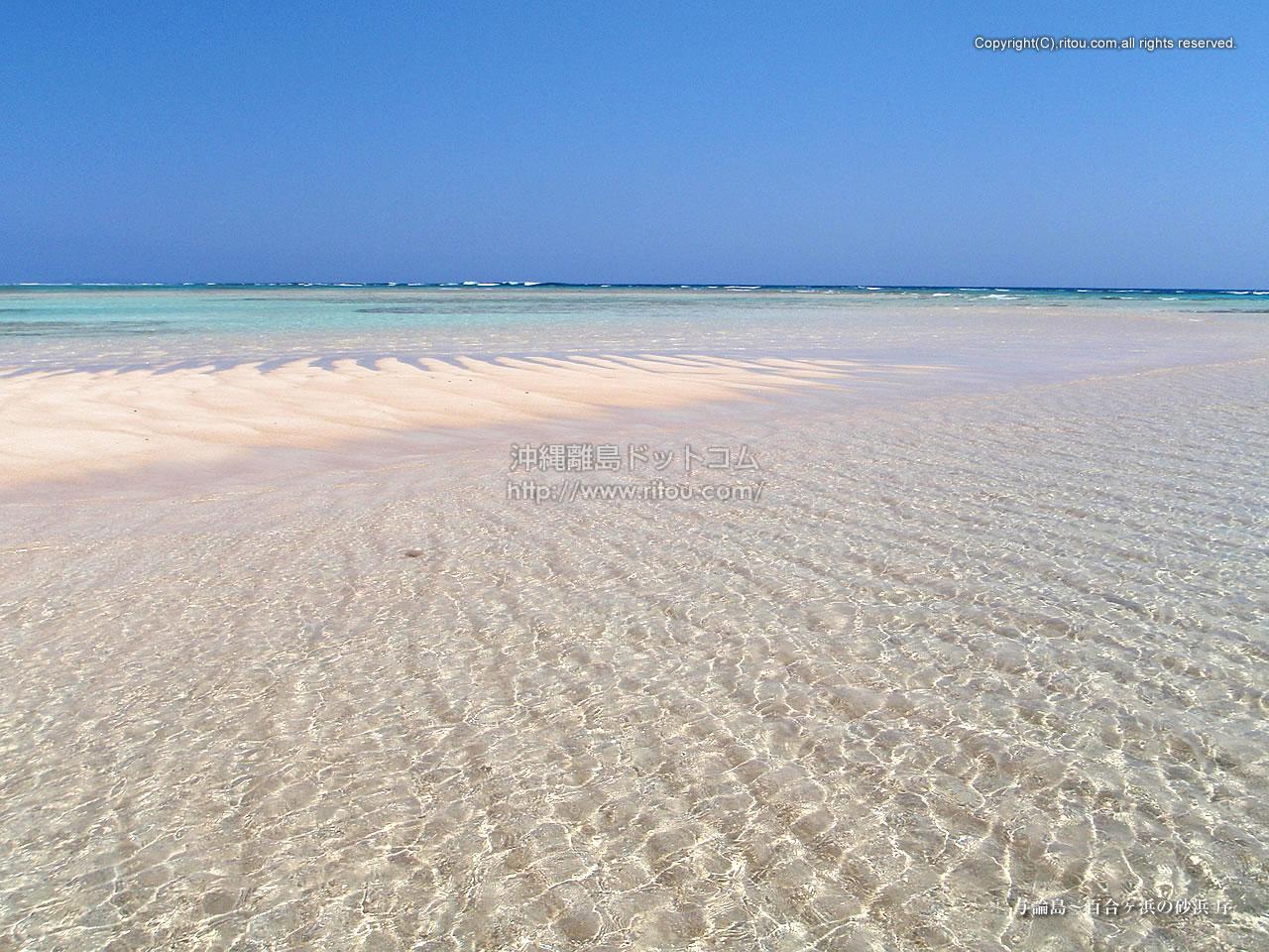 与論島〜百合ヶ浜の砂浜 序