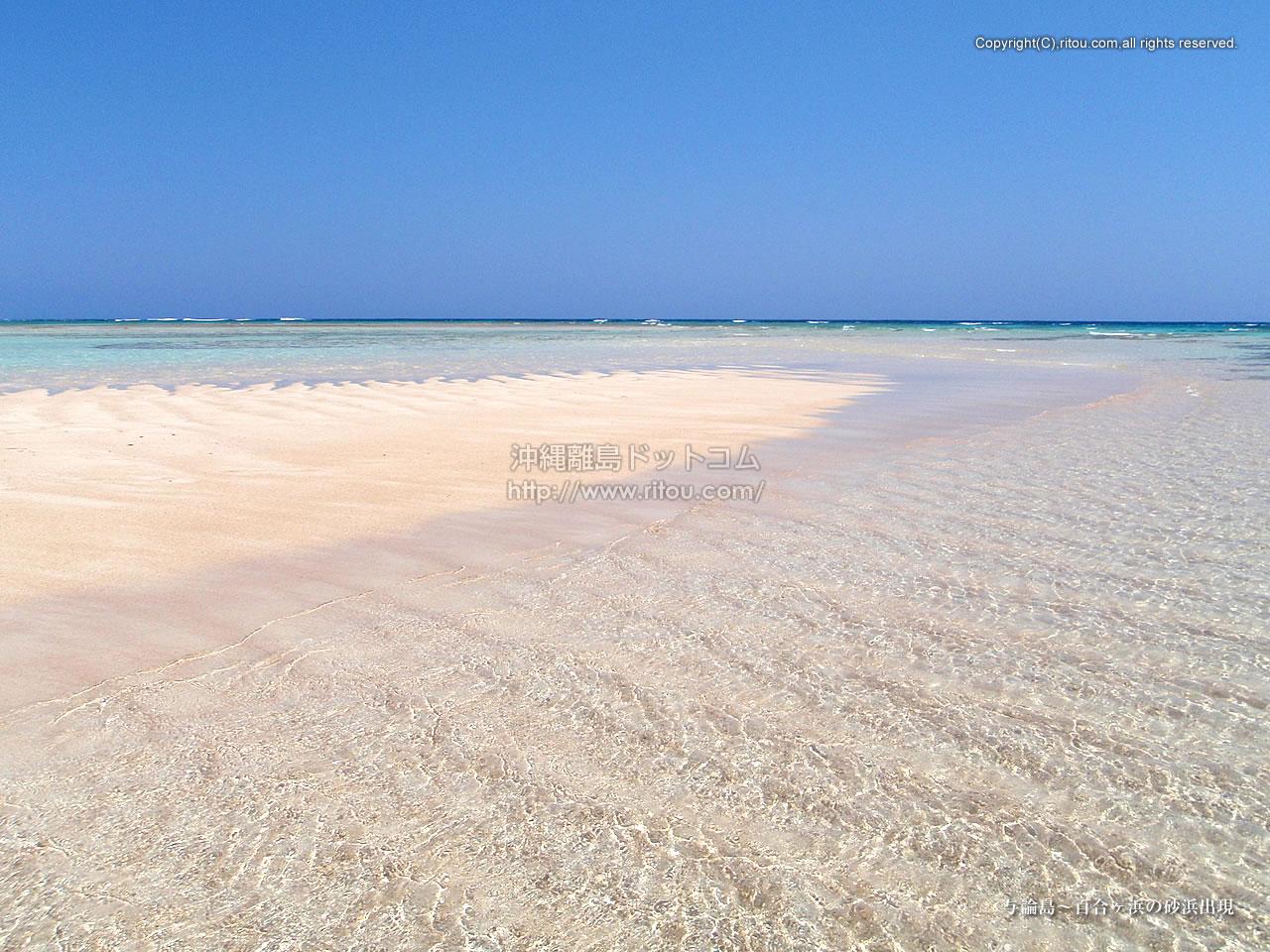 与論島〜百合ヶ浜の砂浜出現