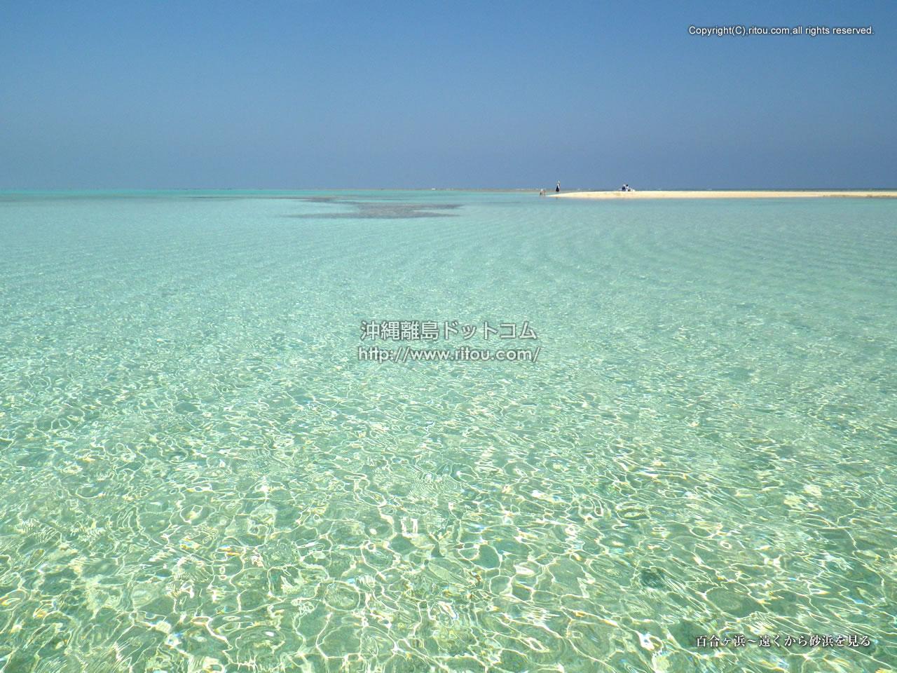 百合ヶ浜〜遠くから砂浜を見る