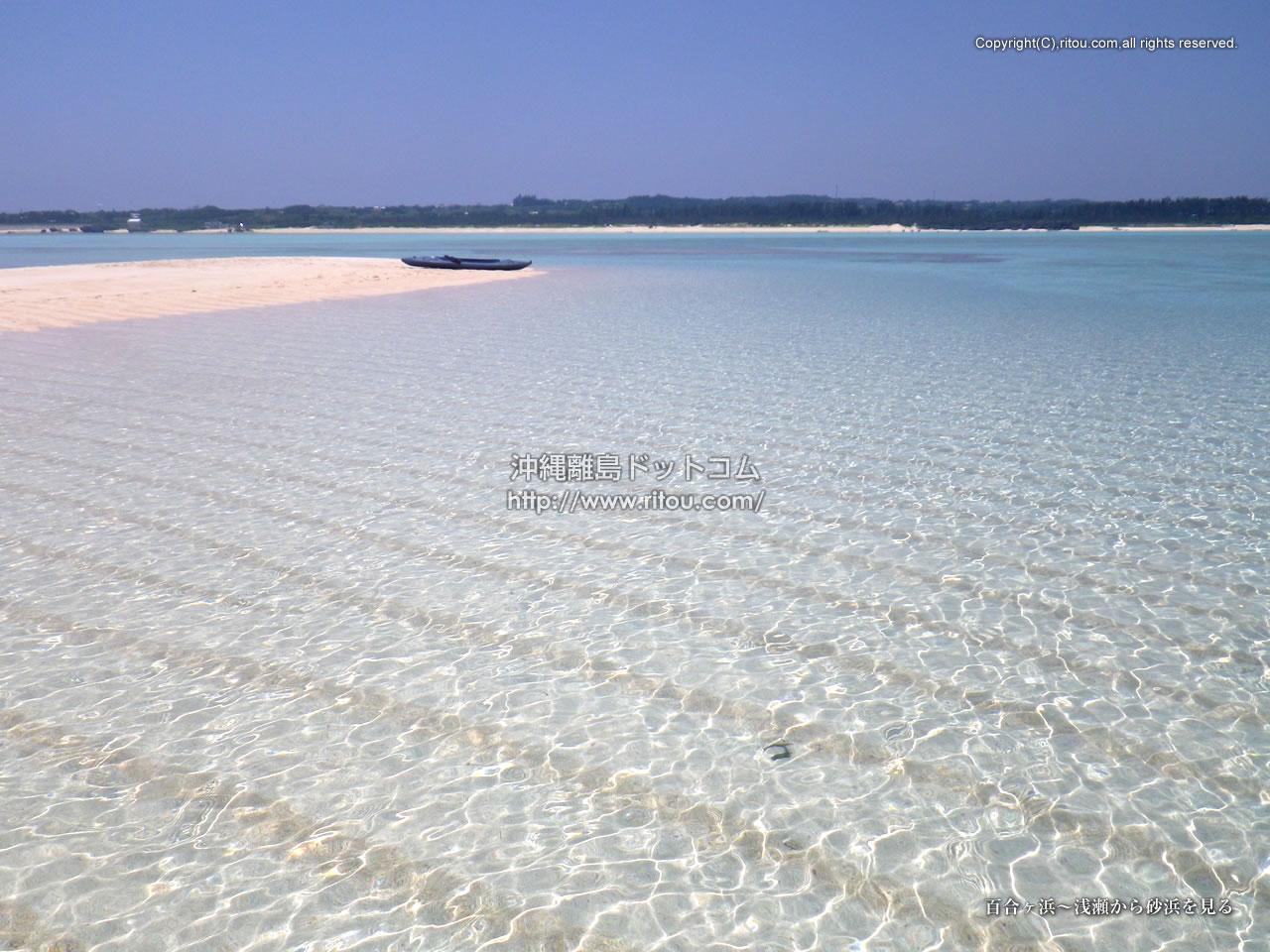 百合ヶ浜〜浅瀬から砂浜を見る