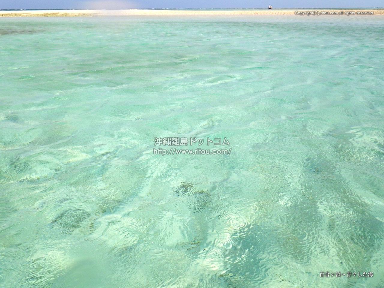 百合ヶ浜〜青々した海
