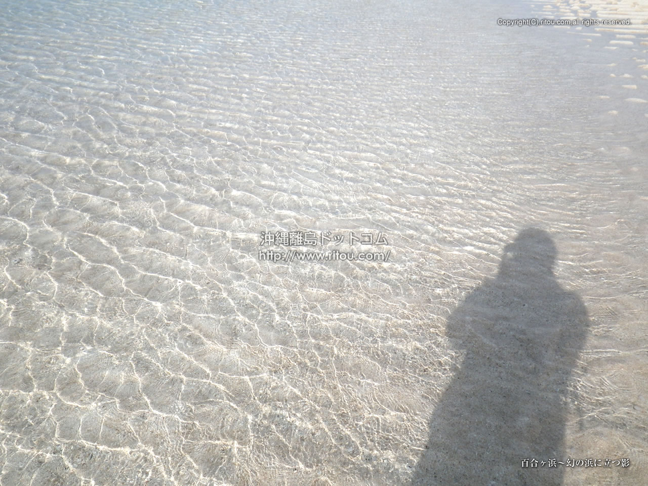百合ヶ浜〜幻の浜に立つ影