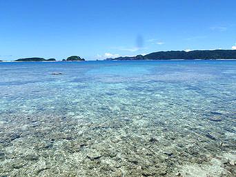 安室島の東側の海の水「抜群の透明度です」