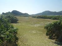 安慶名敷島の安慶名敷島の南側 - 意外と島は大きく散策するには良いかも
