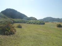 安慶名敷島の安慶名敷島の山 - 緑色のコントラストがなかなか良いです