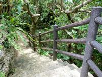粟国島の洞寺 - うっそうとした森の中に入ります
