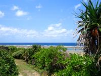 粟国島の塩工場先の海/北の海 - 一見ビーチがあるようには見えない雰囲気