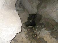 粟国島の西集落の洞窟 - 祭壇というか何かが中にあります