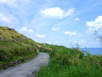 粟国島のナビィの牧場 - 味のある道も残っています