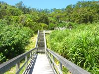 阿嘉島のニシ浜展望台 - ひたすら日向の中を上ります
