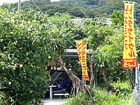 阿嘉島のレンタルしょう