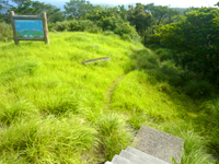 阿嘉島の中岳展望台 - 展望台周辺は緑がうっそうとする