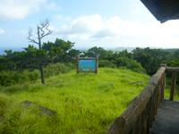 阿嘉島の中岳展望台 - 緑が景色の邪魔をする