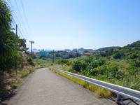 阿嘉島のニシ浜へ続く道