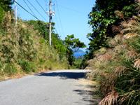 阿嘉島のニシ浜へ続く道 - 坂の上からニシ浜方面を見る
