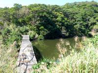 阿嘉島のニシ浜へ続く道 - 坂の上からはダムも望めます