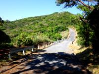 阿嘉島の阿嘉島横断道/ケラマジカ - 中岳先は下りになるがまた上り坂