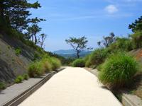慶留間島の慶留間島横断道 阿嘉大橋側/展望台 - ここが頂上部分