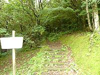 奄美大島の湯湾岳登山道 - 序盤は道も明るいが・・・