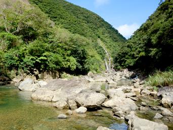 奄美大島のタンギョの滝への道のり「発電所脇の河原を遡上していきます」
