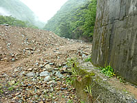 奄美諸島 奄美大島のタンギョの滝への道のりの写真