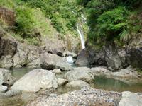 奄美大島のタンギョの滝への道のりの写真