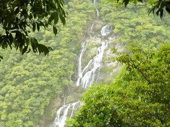 奄美大島のタンギョの滝展望場所/住用ダム
