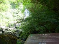 奄美大島のフナンギョの滝 - この橋までは車で行けます