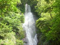 奄美大島のフナンギョの滝 - 橋から岩場を登ると・・・