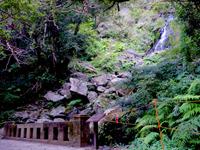 奄美諸島 奄美大島のフナンギョの滝への道のりの写真