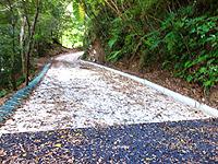 奄美大島のフナンギョの滝への道のり - 川内集落を抜けると舗装がなくなります