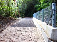 奄美大島のフナンギョの滝への道のり - 川内集落手前の川