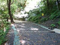 奄美大島のフナンギョの滝への道のり - 最近は案内板が整備