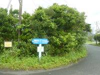 奄美大島のフナンギョの滝への道のり - 仮設トイレも!でもこの先は案内無し・・・