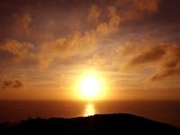 奄美大島の蒲生崎観光公園/蒲生神社/絆の池 - 展望台迄の道の途中にある鳥居