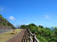 奄美大島の曽津高崎までの海岸線の写真