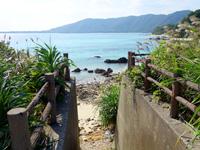 奄美大島の倉崎海岸南