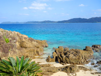奄美大島の倉崎海岸南の写真