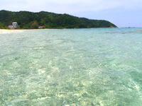 奄美大島の倉崎海岸の海の中 - 透明度は抜群ですが魚はそんなに多くないかも?