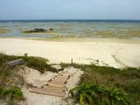 奄美大島のコーラルパームス前の海の写真