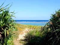 奄美大島の用海岸の写真