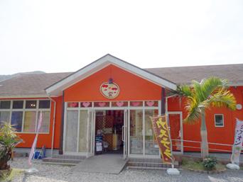 奄美大島のこっこ家/みなみくんの卵
