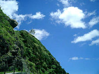 奄美大島の笠利崎/用岬/夢をかなえる「カメ」さん