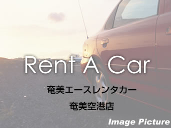 【空港】奄美エースレンタカー 奄美空港店
