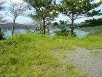 奄美大島の龍郷くじら浜展望場所/ソテツ群生地 - 車が展開および駐車ができるスペース有り