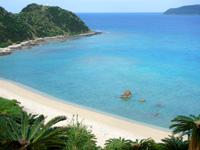 奄美大島の龍郷くじら浜展望場所/ソテツ群生地 - 海の色も上から見た方が最高です